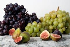 Druvor och fikonträd fotografering för bildbyråer