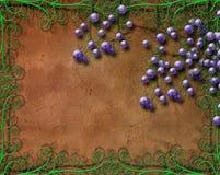Druvor och krusidullar royaltyfri illustrationer