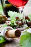 Druvor och rött vin fotografering för bildbyråer