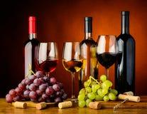 Druvor och vin Arkivfoto