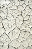 Dry. Lakebed with cracks in the dirt Royalty Free Stock Images