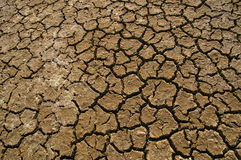 Dry. The effect of global warming or climate change Royalty Free Stock Photography