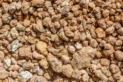 Dry agricultural brown soil Royalty Free Stock Photos
