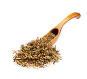 Dry Alfalfa Medicago sativa on the wooden spoon. Macro photo Stock Photography