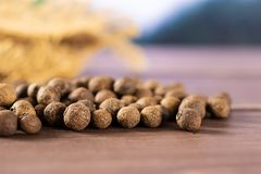 Dry allspice berries asia jungle. Lot of whole dry brown allspice berries asian jungle in background royalty free stock photography