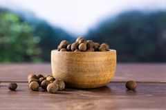 Dry allspice berries asia jungle. Lot of whole dry brown allspice berries with wooden bowl asian jungle in background royalty free stock photos