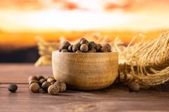 Dry allspice berries with autumn field behind. Lot of whole dry brown allspice berries with wooden bowl on jute cloth with autumn field and sunset in background royalty free stock photos