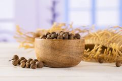 Dry allspice berries with blue window. Lot of whole dry brown allspice berries with wooden bowl on jute cloth with blue window in background royalty free stock photos