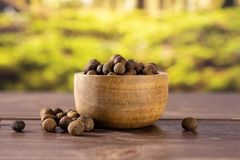 Dry allspice berries with forest behind. Lot of whole dry brown allspice berries with wooden bowl with forest in background royalty free stock images