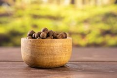 Dry allspice berries with forest behind. Lot of whole dry brown allspice berries with wooden bowl with forest in background stock images
