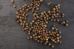 Dry allspice berries on grey stone. Lot of whole dry brown allspice berries flatlay on grey stone stock image