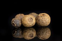 Dry allspice berries isolated on black glass. Group of five whole dry brown allspice berries isolated on black glass stock photography