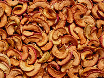 Dry apple slices Stock Images