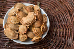 Dry Apricot Seeds Stock Image