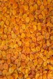 Dry apricots Royalty Free Stock Photos