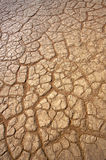 Dry and arid. Land because of drought Royalty Free Stock Photos