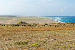 Dry and arid desert landscape in Aruba Stock Image