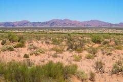 Dry arid landscape Royalty Free Stock Photo