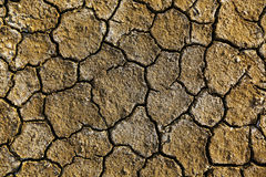 Dry arid soil Stock Photos
