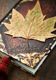Dry autumn leaf on an old style books Stock Image