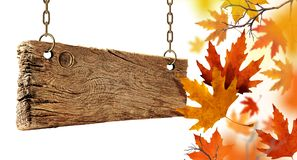 Dry autumn leaves falling from the air and wooden board. royalty free stock photos