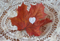 Dry autumn maple leaf and crochet heart on wooden background. Herbarium. Artistic original backdrop, place for text Stock Photography