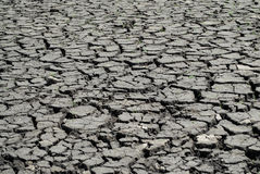 Dry baked earth. Drought and Conservation. Stock Images