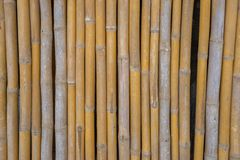 Dry bamboo fence as the background Royalty Free Stock Photography