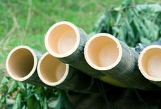 Dry bamboo logs Royalty Free Stock Photos
