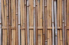 Dry bamboo pattern Royalty Free Stock Image
