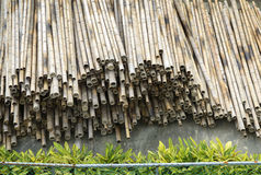 Dry bamboo stack Stock Photography