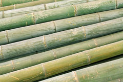 Dry bamboo stacked together Royalty Free Stock Images