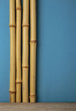 Dry bamboo stalks. And wooden shelf Stock Image