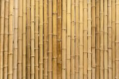 Dry bamboo wall mural would make a great natural wallpaper desig stock image
