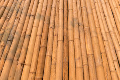 Dry bamboo wall Stock Images