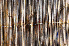 Dry bamboo wall texture background Royalty Free Stock Photos