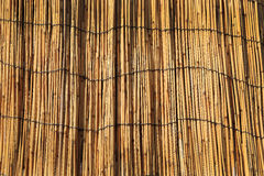 Dry bamboo wall texture background Stock Photography