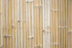 Dry bamboo wall texture Stock Images