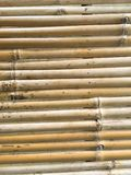 Dry bamboo wall texture Royalty Free Stock Photos