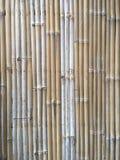 Dry bamboo wall texture Stock Photos