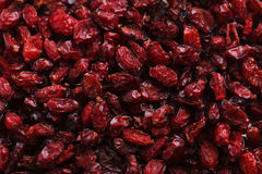 Dry barberries. Pile of dry barberries background Royalty Free Stock Images