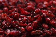 Dry barberries. Pile of dry barberries background Royalty Free Stock Photo