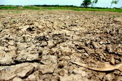 Dry Barren Land. A dry patch of barren land near grassy fields dring rainy season Royalty Free Stock Images