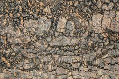 Dry Barren Scorched Soil Cracked Fragmented Rough Desolate Grunge Surface.  Royalty Free Stock Images