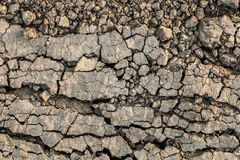 Dry Barren Scorched Soil Cracked Fragmented Rough Desolate Grunge Surface.  Stock Images