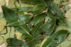 Dry bay laurel leaves. With pepper Stock Photo