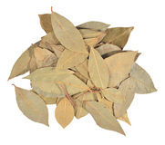 Dry bay laurel leaves on a white Stock Image