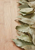 Dry bay leaf Royalty Free Stock Photo