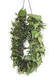 Dry bay leaf Stock Images