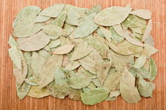 Dry bay leaf on a bamboo mat, can be used as texture. Stock Images